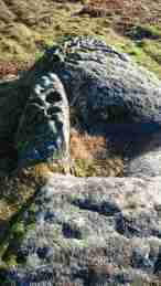 Image of grey rock in heathland with round carvings engraved in the stone