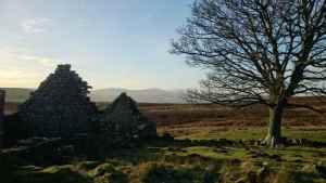 Image of two gable-end stone walls of ruined house in triangular shape against skyline with bare trees to right