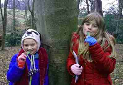 Image of girl in blue coat and girl in red coat eating wild garlic leaves in from of tree in woodland with dead leaves on ground
