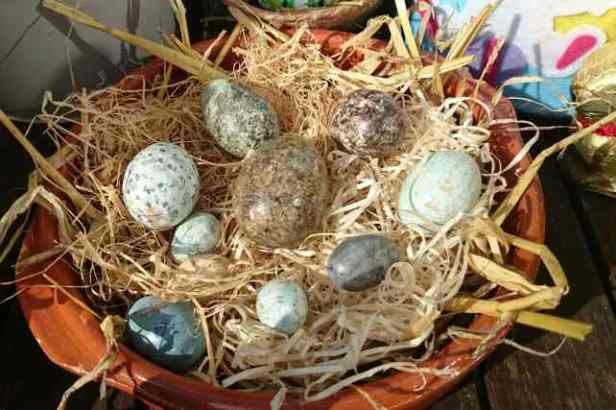 Image of terracotta bowl with straw nest and different sized and coloured wooden birds eggs inside