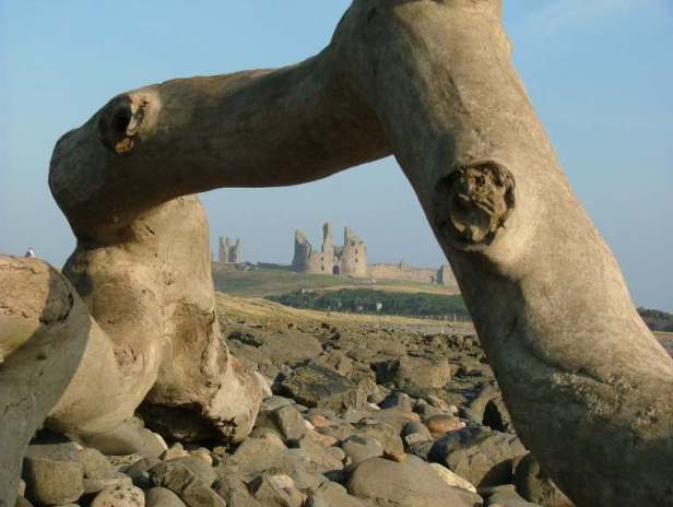 Image of distant castle with turrets photographed through driftwood log frame in foreground on pebble beach