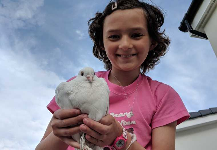 Image of girl in pink top holding white dove looking down at camera from a height with roofs and sky in background