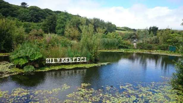 Image of lake with trees and vegetation around with backwards written sign to reflect in the water saying sit and reflect