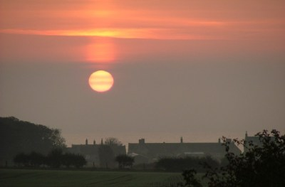Image of pale yellow sun reflected in clouds in pink and orange sky over sea above silhouette of field, house and bushes