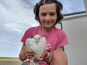 Image of smiling girl in pink top squatting on flat roof holding white dove with heart shaped chest in her hands with fields, sky and roofs behind