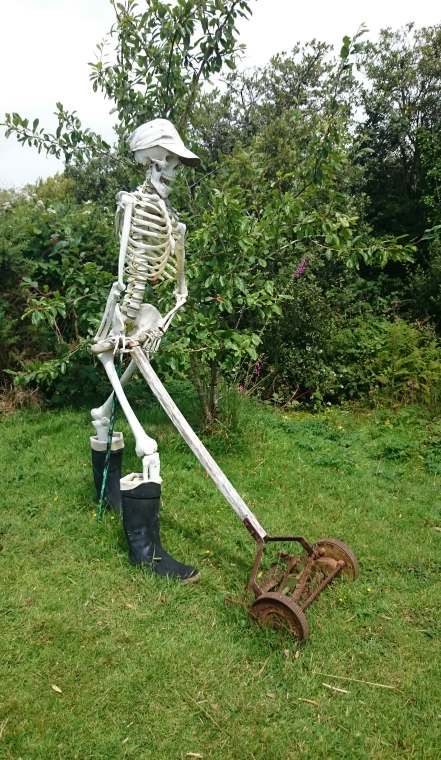 Image of standing skeleton wearing a cap and wellies pushing an old lawnmower on grass with bushes behind