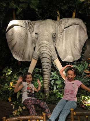 Image of two girls with excited faces sitting in front of model elephant and jungle vegetation in restaurant