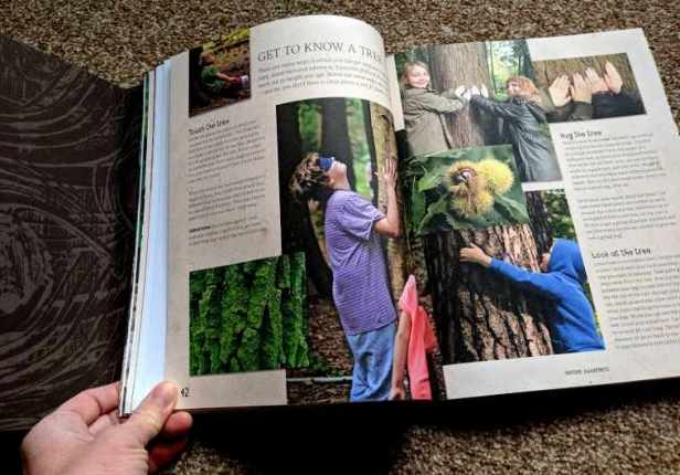 Image of double page spread of open book showing children hugging trees