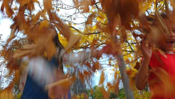 Image of two girls barely visible behind orange and yellow autumn leaves blowing around in the air