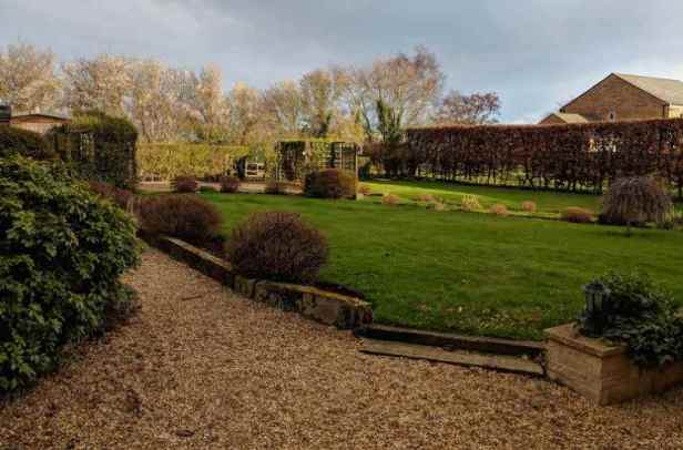 Image of large garden with steps up to lawn, shrubs and beech hedge