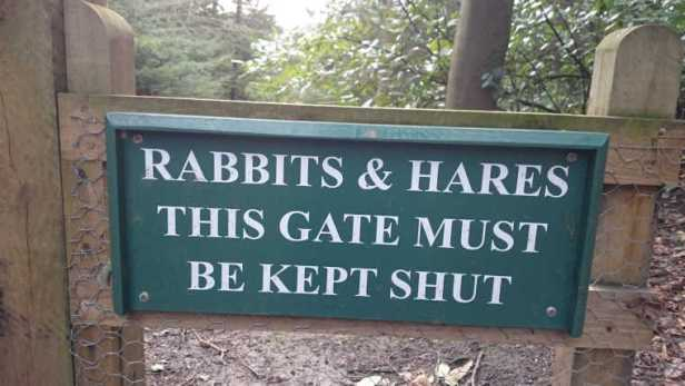 Image of sign on woodland gate saying rabits and hares this gate must be kept shut