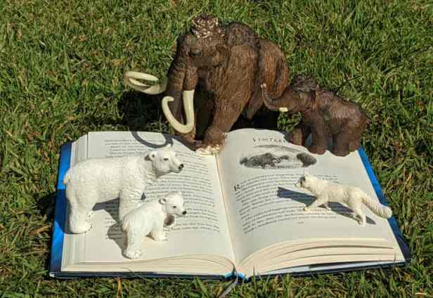 Open copy of Viper's Daughter book by Michelle Paver on grass with model mammoths, polar bears and arctic fox standing on pages