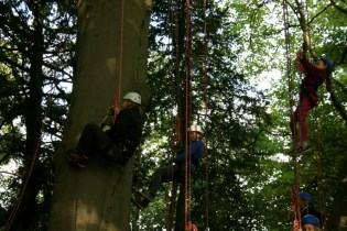 man-woman-and-child-in-climbing-harnesses-in-tree