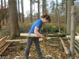woman-in-forest-cutting-logs-on-a-frame