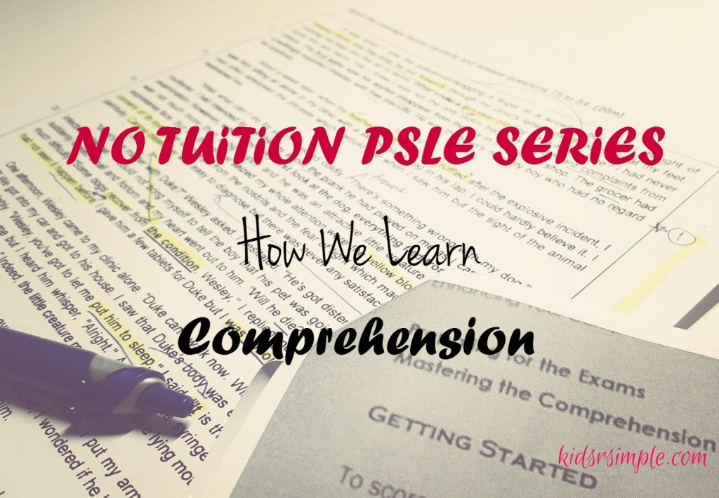 How We Learn Comprehension