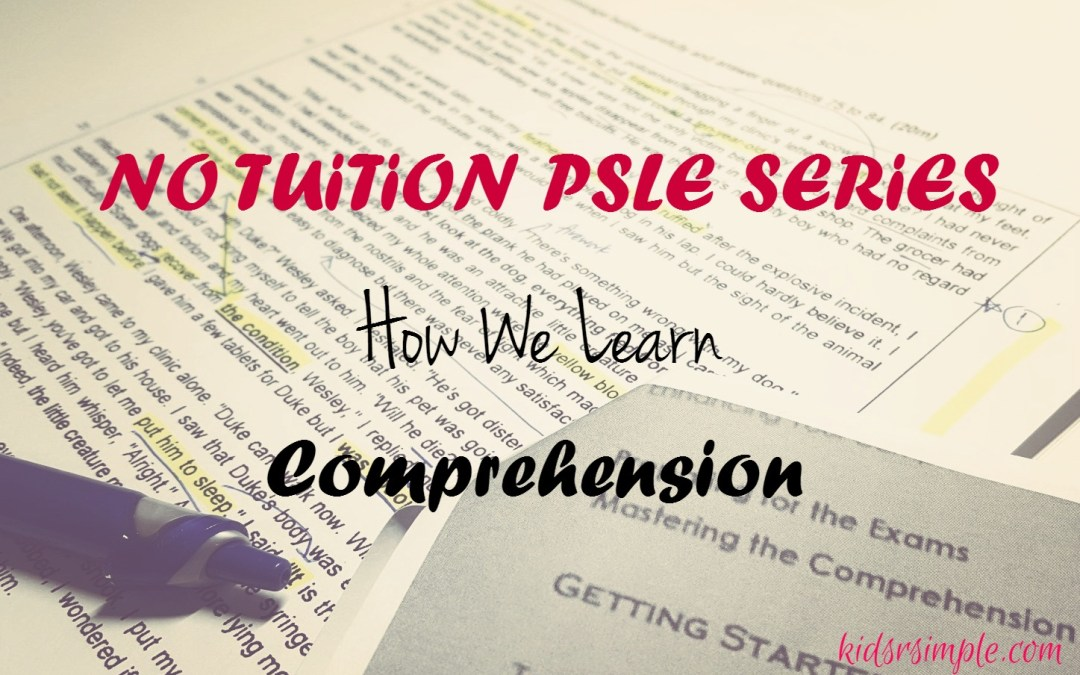 PSLE Series – How We Learn Comprehension (The No Tuition Way)