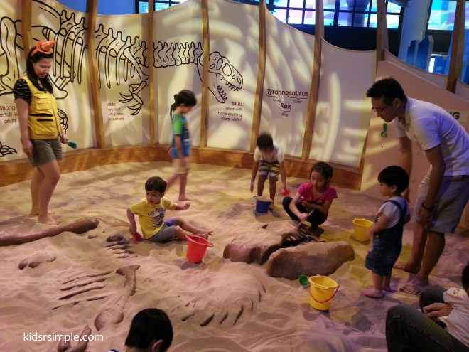 Unravel the dinosaur fossils