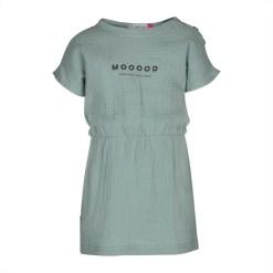 kiezeltje jurk mood