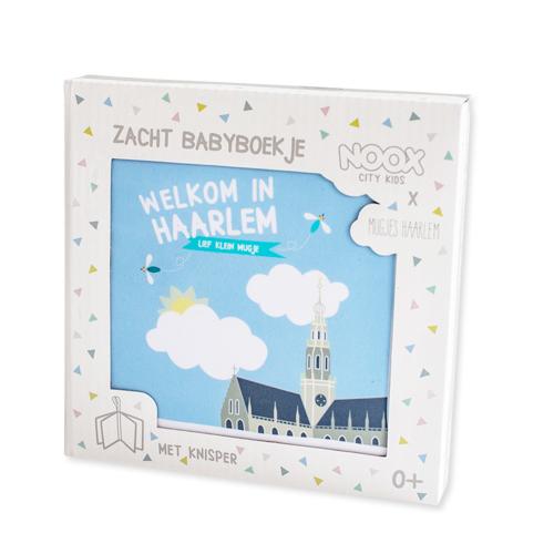 babyboekje Haarlemse Mug