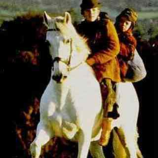 """""""Into the West""""– A Great Irish Film for Horse Lovers"""