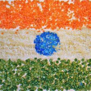 Tricolor Indian Flag- Kid World Citizen