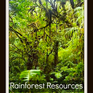 Rainforest Resources
