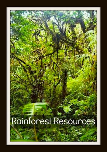 Rainforest Resources Kids- Kid World Citizen