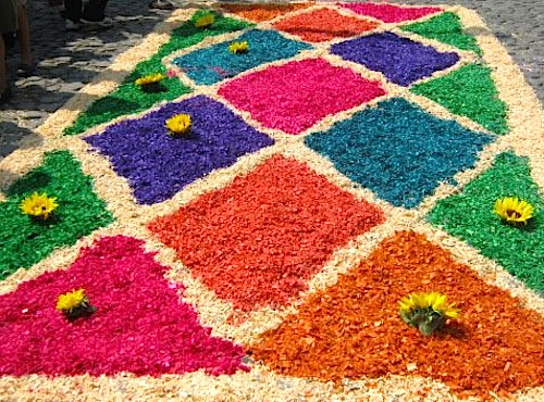 Sawdust Alfombras Guatemala- Kid World Citizen