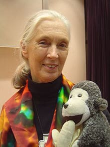 Learn about Earth Hero Jane Goodall: Champion of the Chimps