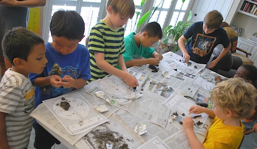Boys Dissecting Owl Pellets- Kid World Citizen
