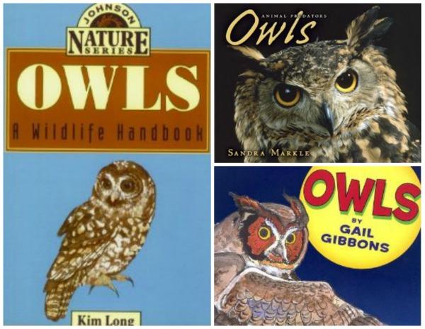 Books after Owl Pellets for Kids- Kid World Citizen