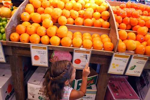 Origins of Fruit Imports- Kid World Citizen