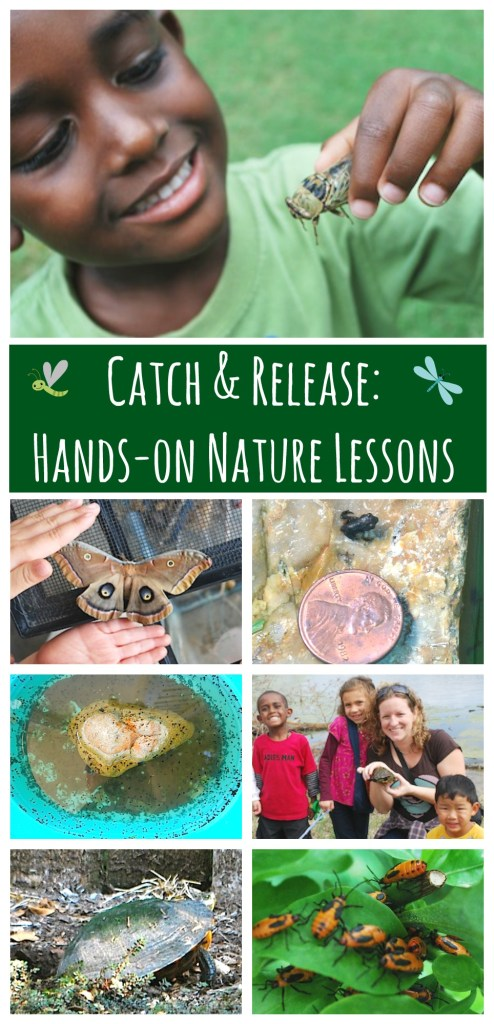 Nature Watch Catching Critters- Kid World Citizen