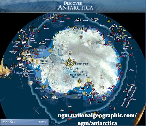 Learn about Antarctica Penguin Map- Kid World Citizen