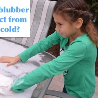 The Classic Blubber Experiment, to Learn about Arctic Adaptations