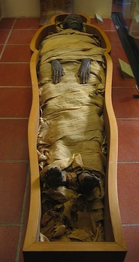 Egypt Vacation Mummy in Vatican Museums- Kid World Citizen
