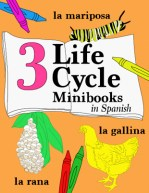 3 life cycles spanish minibooks chicken butterfly frog printable