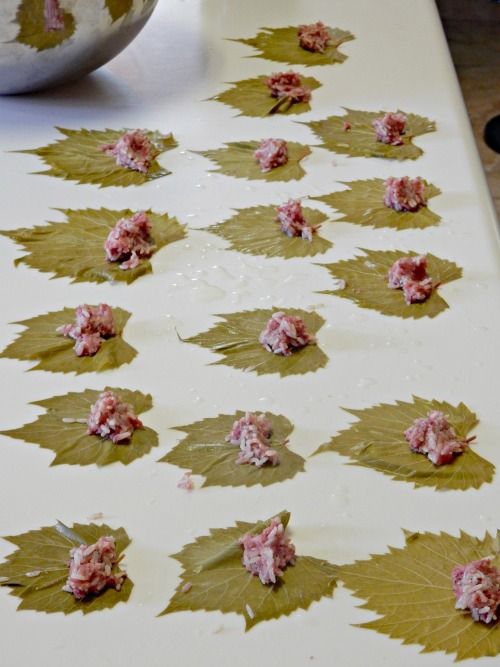 Preparing Stuffed Grape Leaves- Kid World Citizen