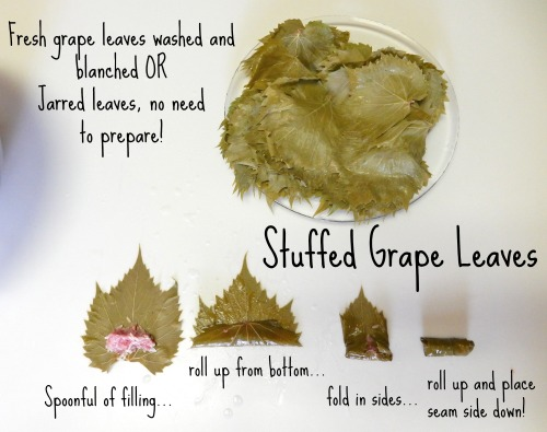 Stuffed Grape Leaves Rolling Tutorial- Kid World Citizen