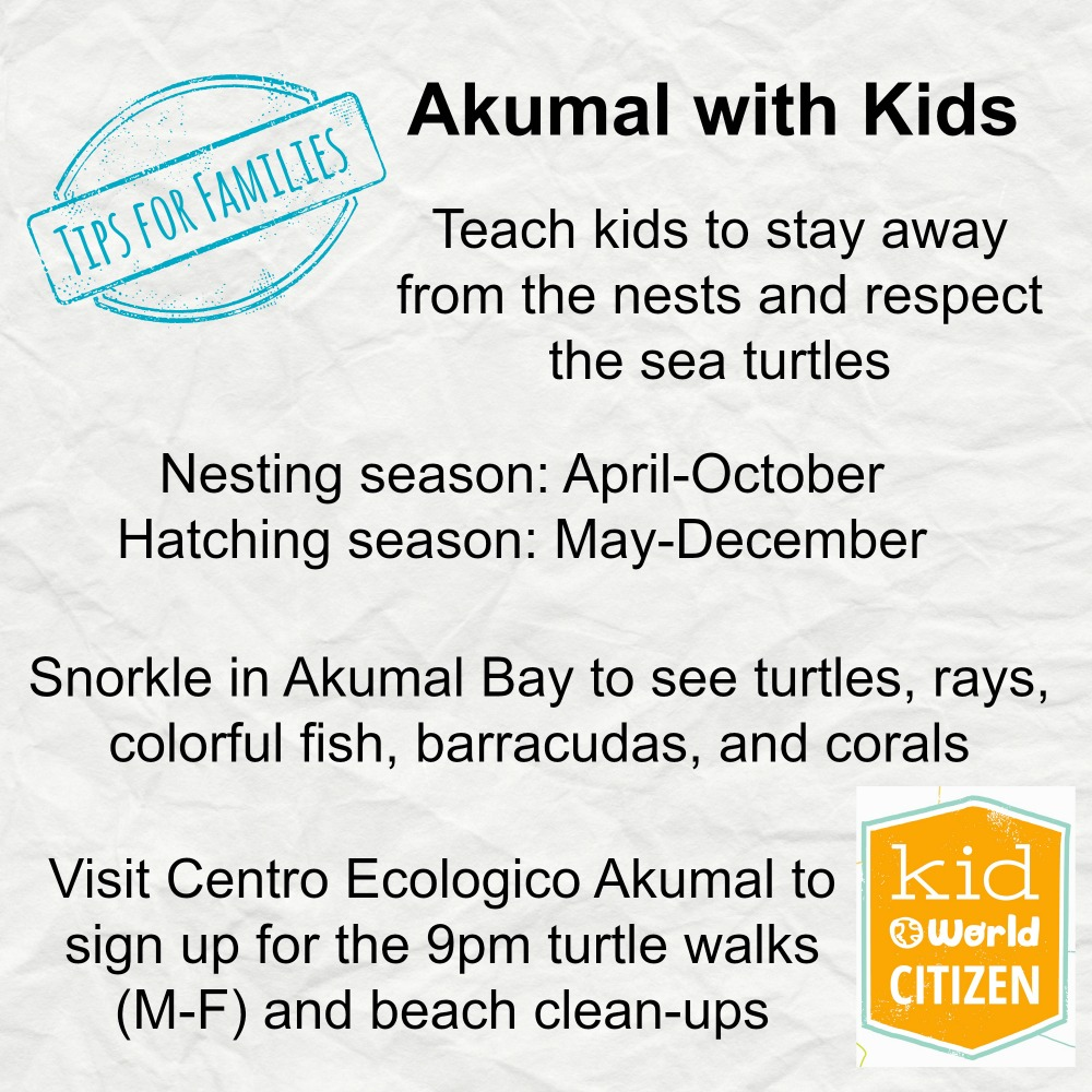 Sea Turtles in Mexico Tips for Kids- Kid World Citizen