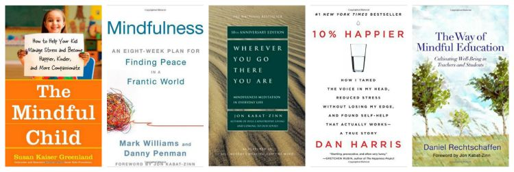 What is Mindfulness Books for Adults- Kid World Citizen