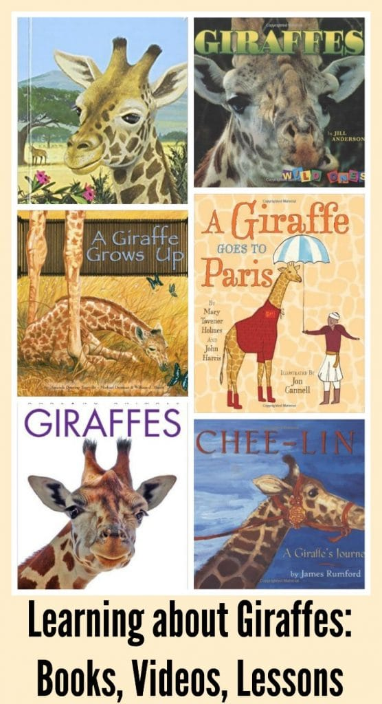 Learn about Giraffes Kids Lessons- Kid World Citizen