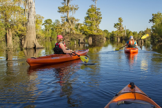 Kayak Gulf Shores Florida- Kid World Citizen
