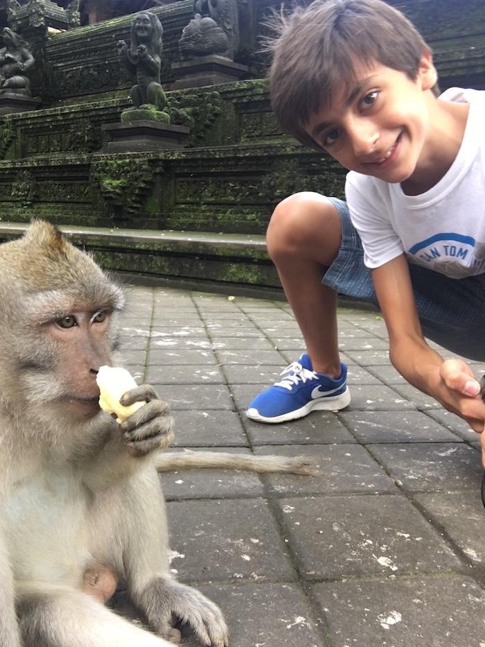 Travel Bali with Kids Monkeys- Kid World Citizen