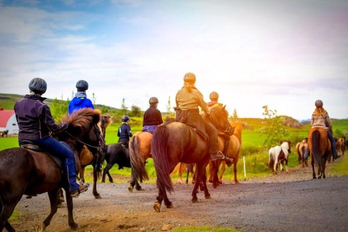 Travel Iceland with Kids horseback Riding- Kid World Citizen