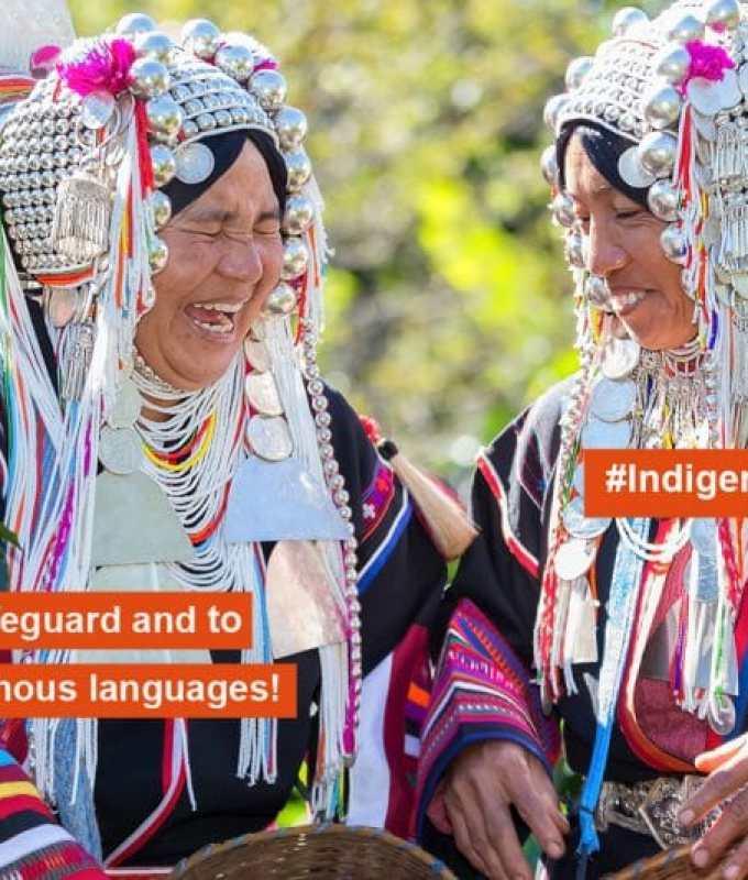 Indigenous Language Security
