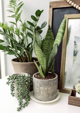17 DIY Indoor Garden Ideas To Add Greenery During Winter 26