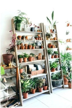 19 DIY Pretty Decorative Plants For Your Fresh Decoration 30