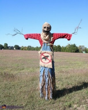 17 Incredible Scarecrow Design Ideas For Halloween 09