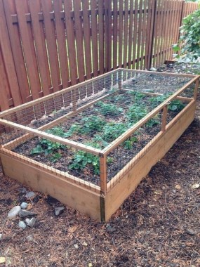 19 Best DIY Vegetable Garden Ideas 09